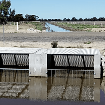 Murray Irrigation Project